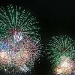 happy new year really