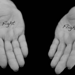 Fight or Flight and the 21st century human